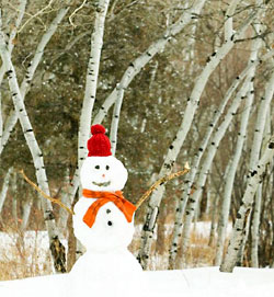 Lone snowman - with carrot nose held high